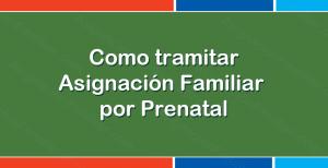 Como se tramita la Asignación Familiar por Prenatal