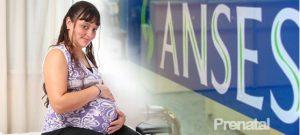 Asignación por Prenatal