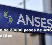 Bono de 23000 pesos de ANSES: requisitos